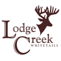 lodgecreek
