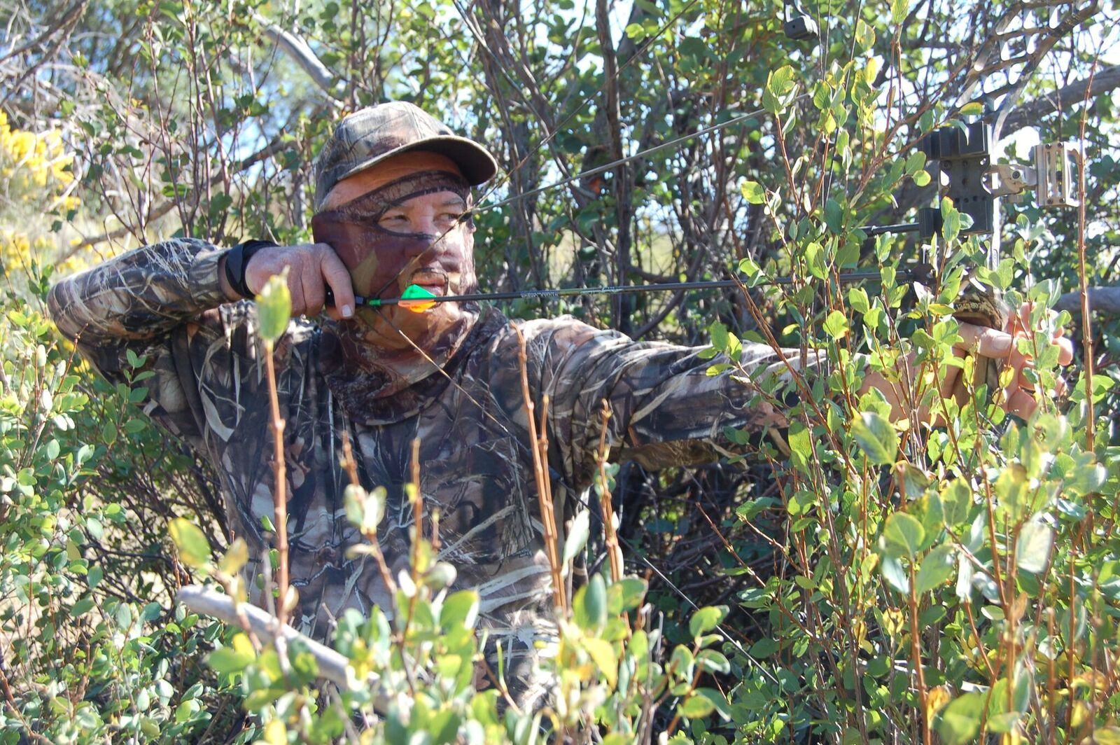 Bowhunter in Camo - Camo from head to toe is the standard dress code for the successful bow hunter.
